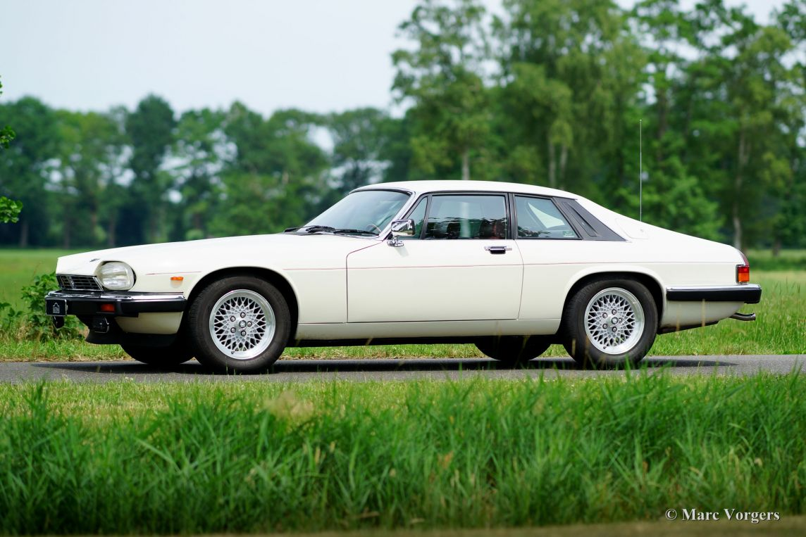 jaguar xj s v12 coupe 1987 classicargarage fr. Black Bedroom Furniture Sets. Home Design Ideas